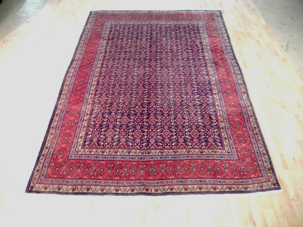 7' x 10' Hand Knotted  Persian Herati Rug